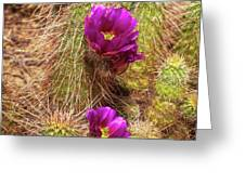 Bouquet Of Beauty Greeting Card by Rick Furmanek