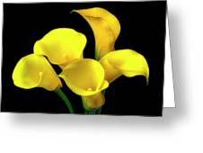 Bouquet Of Yellow Calla Lilies Greeting Card