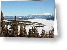 Bove Island On Windy Arm In Tagish Lake Yukon Greeting Card