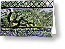 Bridge Through Live Oaks Greeting Card