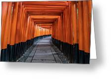 Bright Orange Torii Gates In Kyoto, Japan Greeting Card