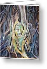 Buddha Head In Tree Roots Greeting Card