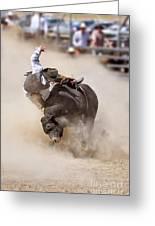 Bull Riding Greeting Card