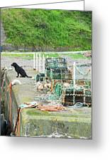 Burnmouth Harbour With Dog On Pier And Lobster Pots Greeting Card
