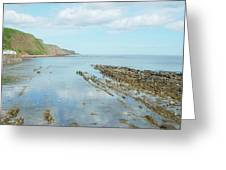 Burnmouth Shore, Cliffs And North Sea Greeting Card