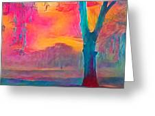 Bush Sunset  Greeting Card by Chris Armytage