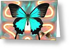 Butterfly Patterns 21 Greeting Card