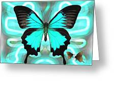 Butterfly Patterns 22 Greeting Card