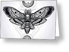 Butterfly - Vector Greeting Card