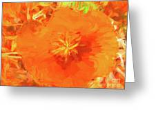 California Poppy Inside Greeting Card