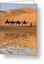 Camel Caravan Going Along The Lake The Greeting Card