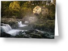 Cenarth Falls At Sunrise Greeting Card by Elliott Coleman
