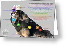 Canine Chakras Greeting Card