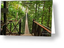 Canopy Walkway. Taman Negara National Greeting Card