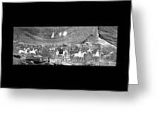 Canyon De Chelley Pictographs Greeting Card