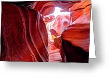 Canyon X Greeting Card