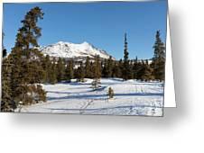 Carcross Desert Off South Klondike Highway Yukon Greeting Card