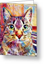 Cat 13 Greeting Card
