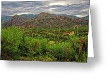 Catalina Foothills H1130 Greeting Card