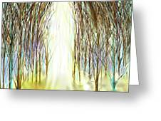 Cathedral Forest Greeting Card by Darren Cannell
