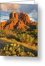 Cathedral Rock, Coconino National Greeting Card