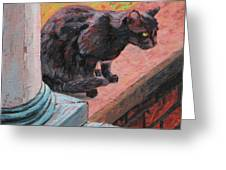 Cat's Pause 2 - Black Cat On The Front Porch Greeting Card