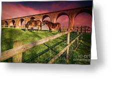Cefn Viaduct Horses At Sunset Greeting Card