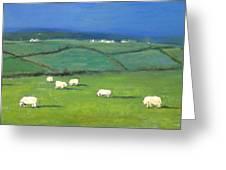 Celtic Sheep Greeting Card