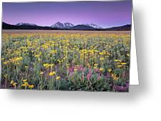 Central Idaho Color Greeting Card