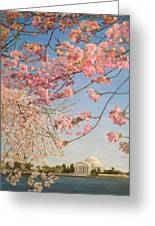 Cherry Blossoms At The Tidal Basin Greeting Card