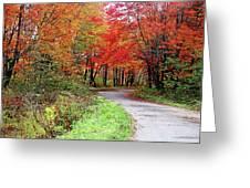 Chikanishing Road In Fall Greeting Card
