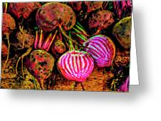 Chioggia Beets Greeting Card