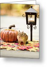 Chipmunk In The Autumn Greeting Card