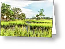 Chisolm Island - Marsh At Low Tide Greeting Card
