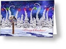 Christmas Card With Bird House Greeting Card