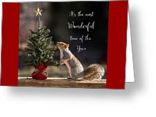 Christmas Squirrel Most Wonderful Time Of The Year Square Greeting Card