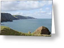 cliffs and coast at St. Abbs Head, Berwickshire Greeting Card