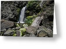 Coastal Falls Greeting Card by Margaret Pitcher