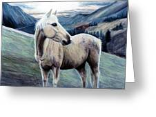 Cochise Greeting Card