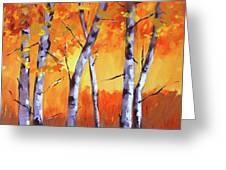 Color Forest Landscape Greeting Card