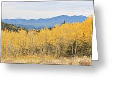 Colorado Autumn In The Mountains Greeting Card