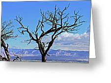 Colorado National Monument Colorado Blue Sky Red Rocks Clouds Trees 2 10212018 2842.jpg Greeting Card