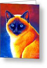 Colorful Siamese Cat Greeting Card