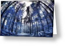 Colorful Trees Iv Greeting Card