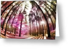 Colorful Trees V Greeting Card