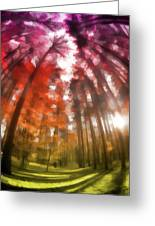 Colorful Trees Vii Greeting Card