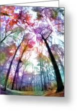 Colorful Trees Xiii Greeting Card