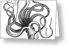 Common Octopus Octopus Vulgaris Greeting Card