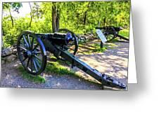 Confederate 20 Pound Parrott Rifles Greeting Card