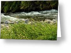 Cool Clear Water Greeting Card